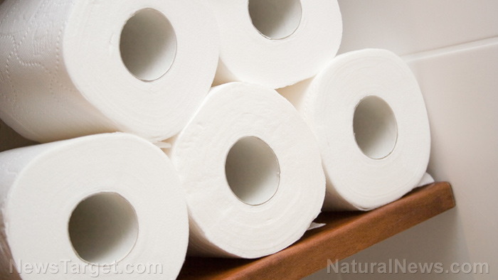 Image: No TP? No problem: How to make DIY toilet paper